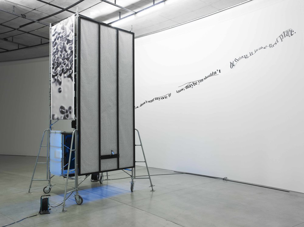 Installation View. Photo Credit: Tadasu Yamamoto Courtesy of: ACAC