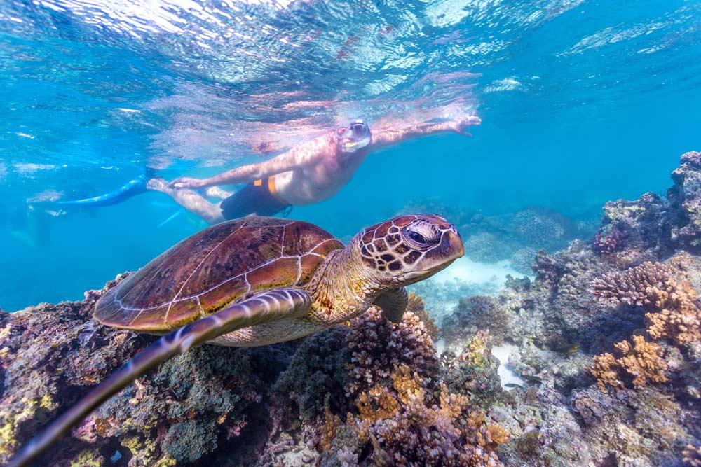 Turquoise-Bay_Tourism-WA.jpg