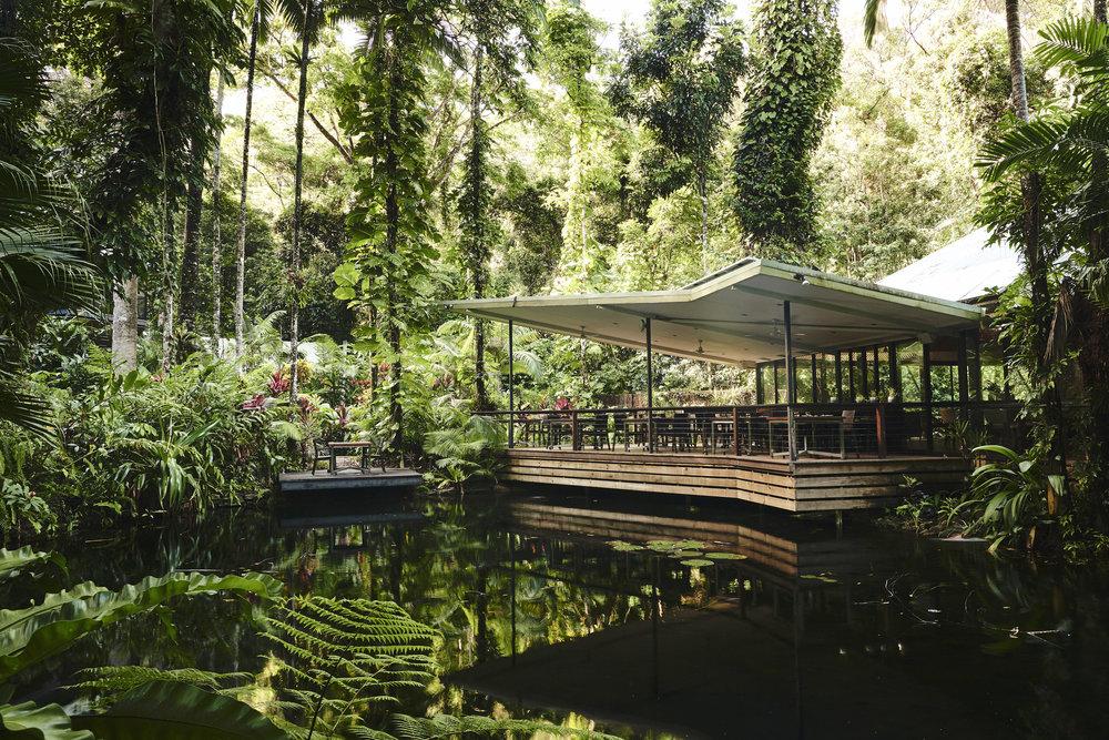 Daintree Ecolodge_Restaurant_Simon Shiff_0 162_FULLSIZE JPEG 300DPI ADOBE RGB 5MB.jpg