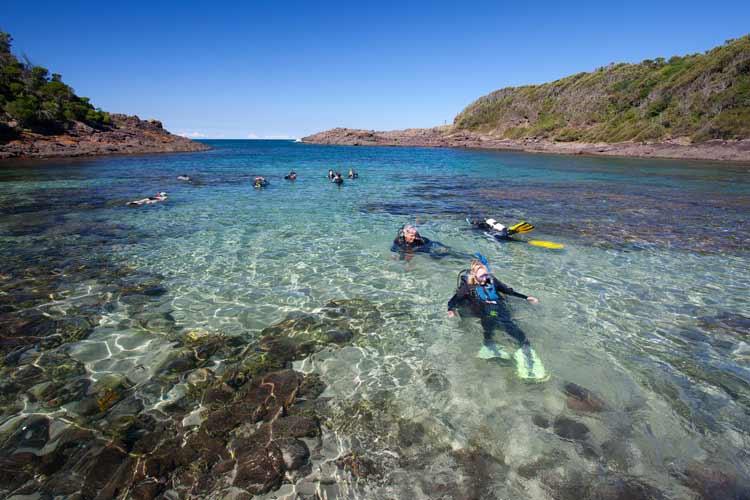 Scuba+diving_Bushrangers+Bay_Shellharbour+Scuba+Centre.jpg