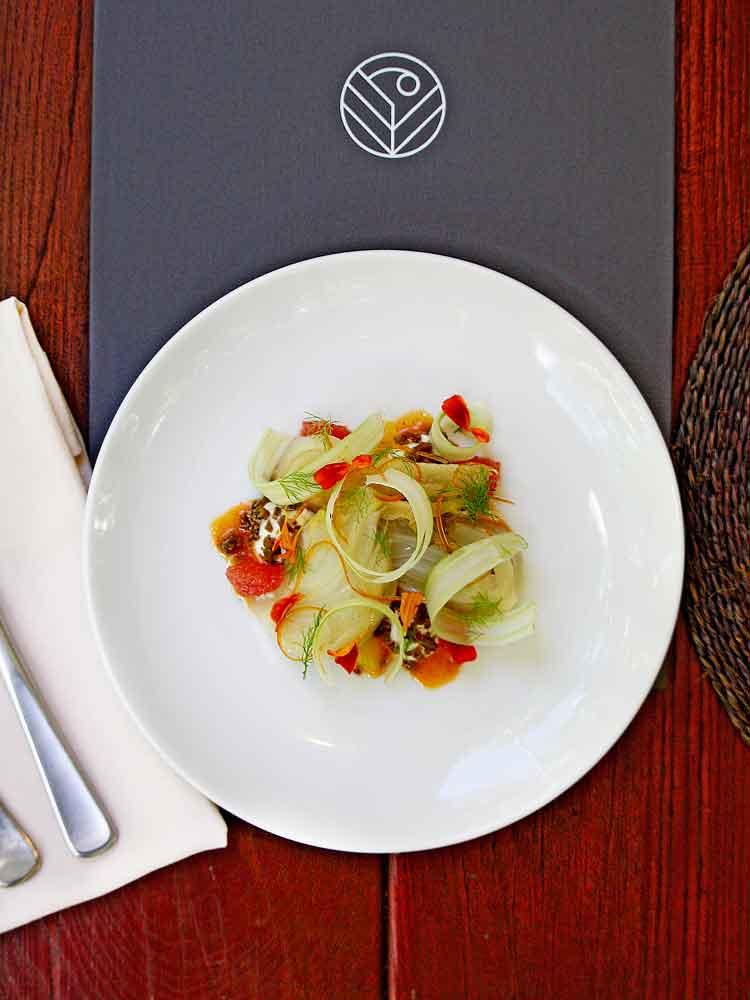 Confit-fennel,-ruby-grapefruit,-Mungalli-biodynamic-labneh,-dried-olive,-Boonjie-tamarind-vinaigrette.jpg