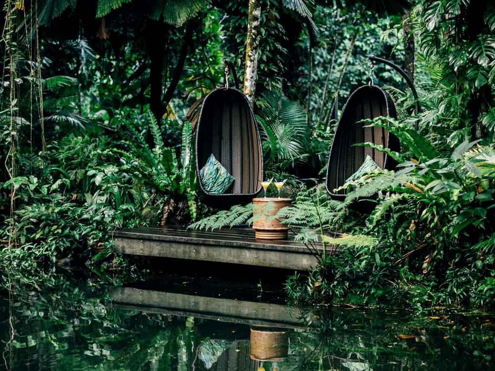 Eco-Rainforest-Lodge-0126.jpg
