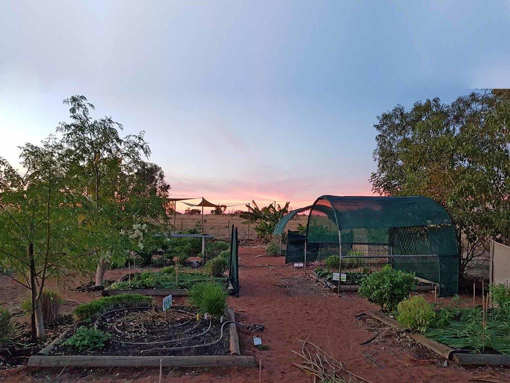 AR2018_General_Garden-at-sunset-(1).jpg