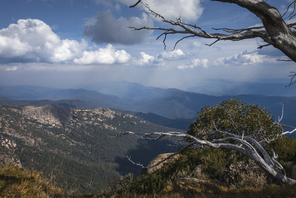 View from Mount Buffalo