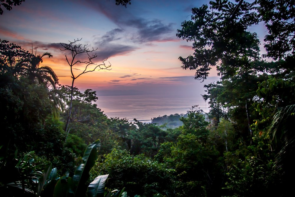Lapa Rios - Costa Rica