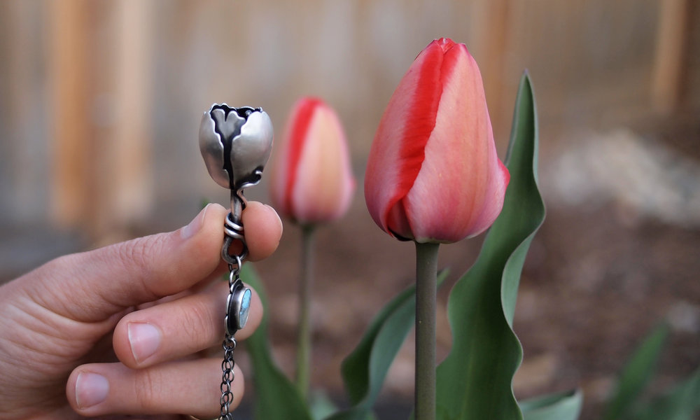 Tulip11.jpg