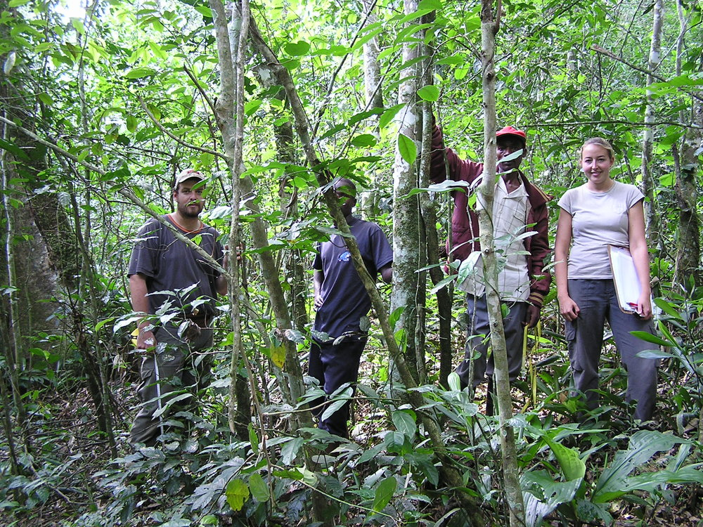 The 2005 permanent plot team in Kibale Forest, Uganda