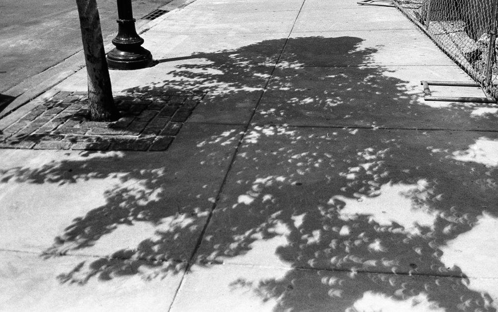KodakTRIX_002.jpg