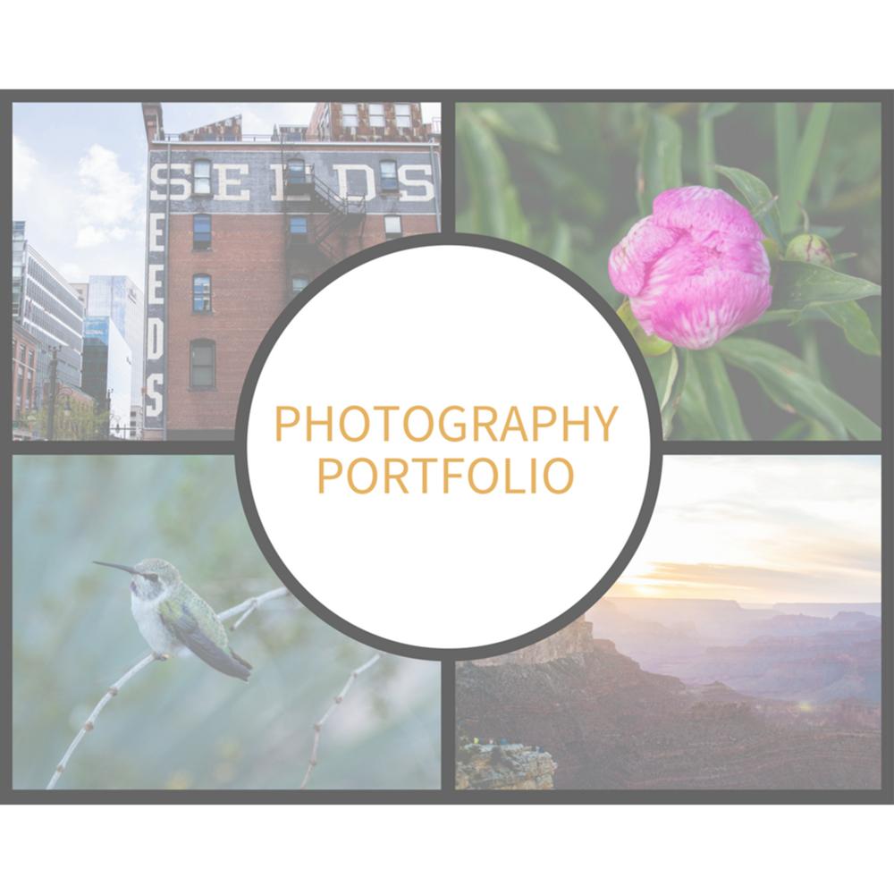 Photography Portfolio Header.png