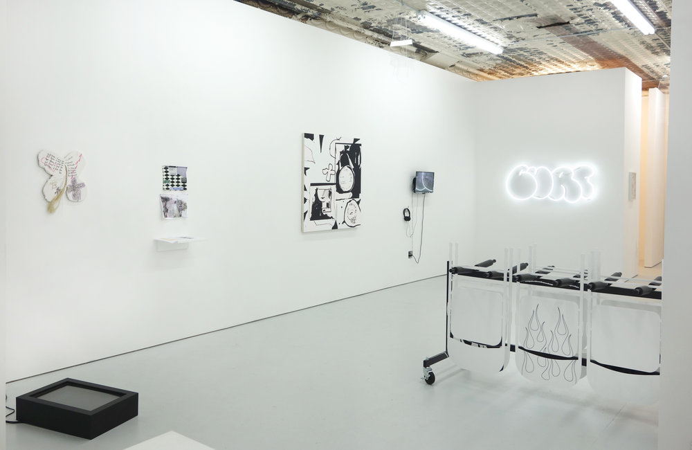 Pure Raw Installation View