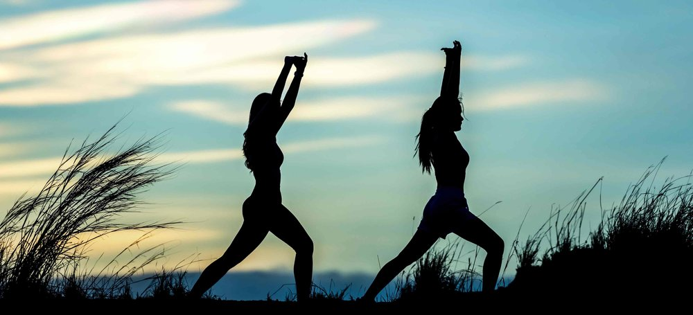 Beginners Yoga Courses