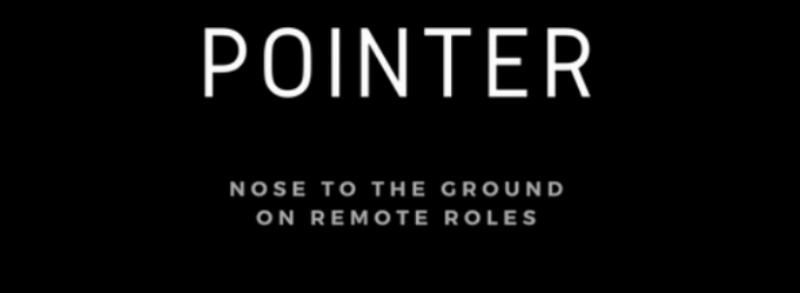 Pointer Remote Roles - logo header banner