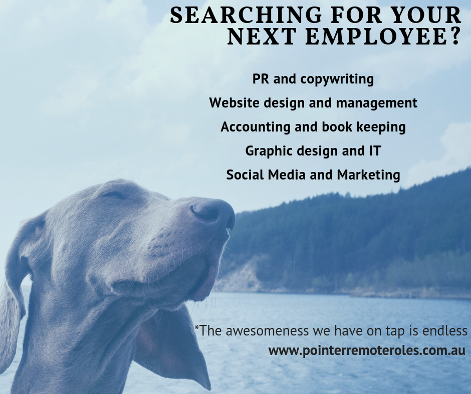 Searching....png
