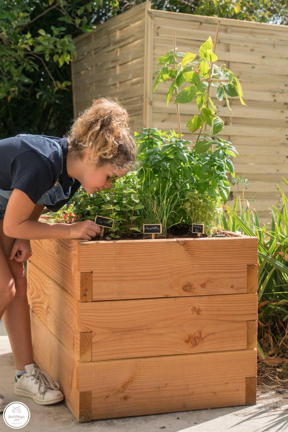 Our Kitchen Garden -