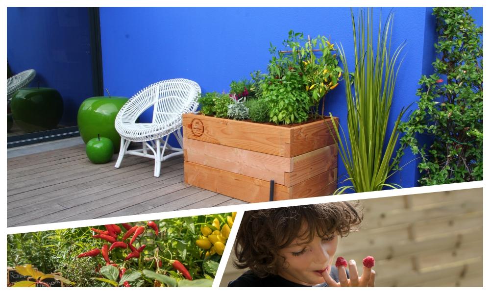 collage photo newletter .jpg