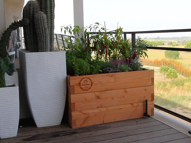 Balcony style..🏬 With Haut-Potager you can gardening anywhere! 🌱🍅🌾🍓🌼🥒🥕🌶