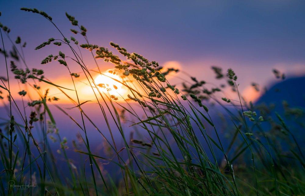 A Dorrigo Sunset   For a few swift moments the sun emerges from Dorrigo's storm clouds.