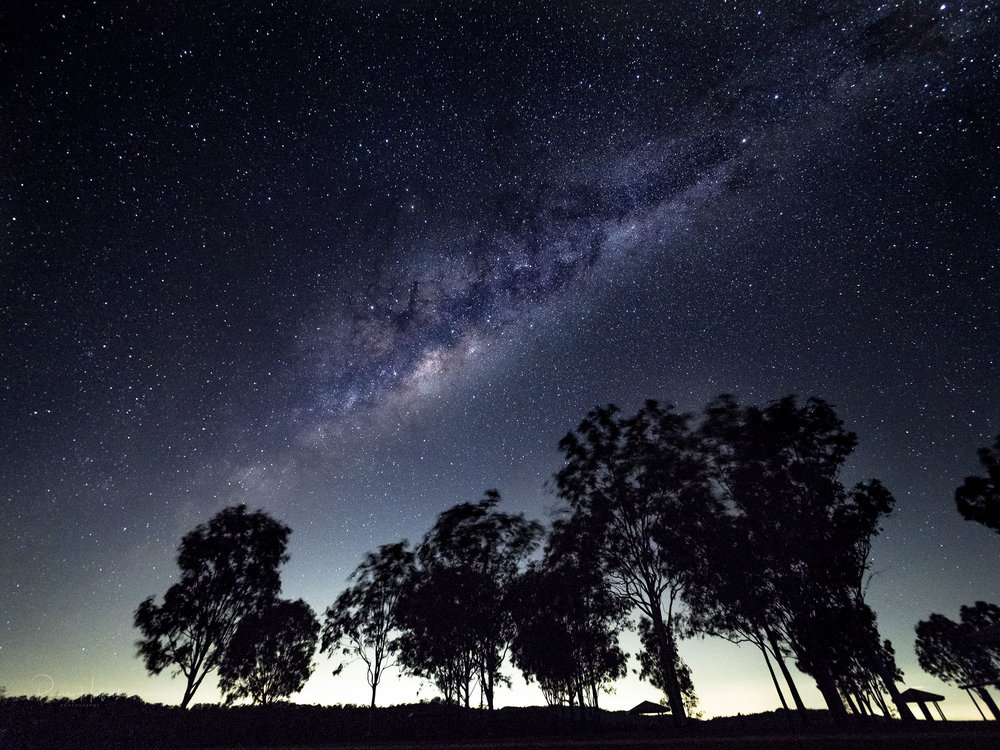 Gumtrees and Galaxies