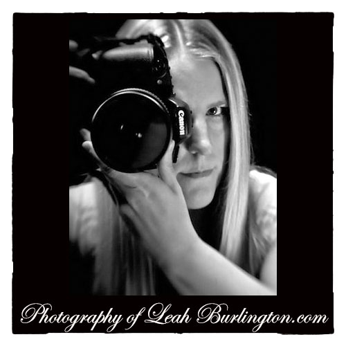 Leah Burlington Photography - MBM Music Network