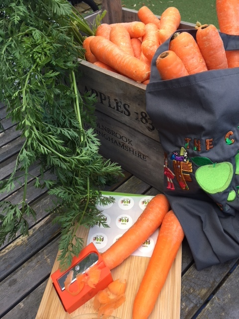 Cool Food School carrots