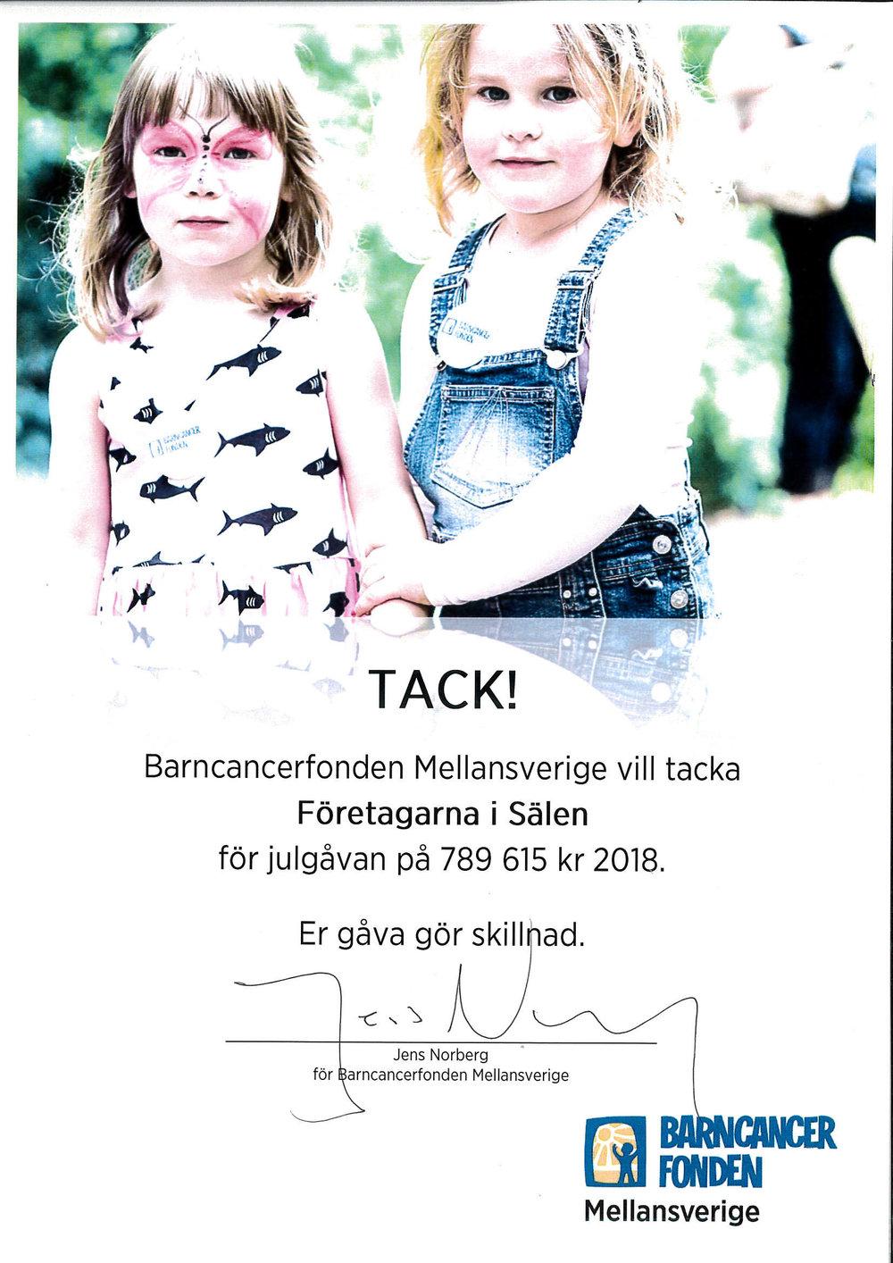 Stort tack! - Sälens Högfjällshotell vill tacka alla företag i Sälen som har bidragit till vår insamling till Barncancerfonden.