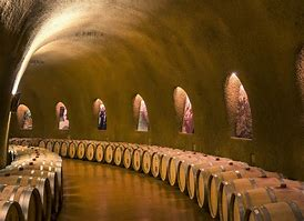 high res french wine cellar.jpg