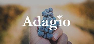 adagio2.jpg