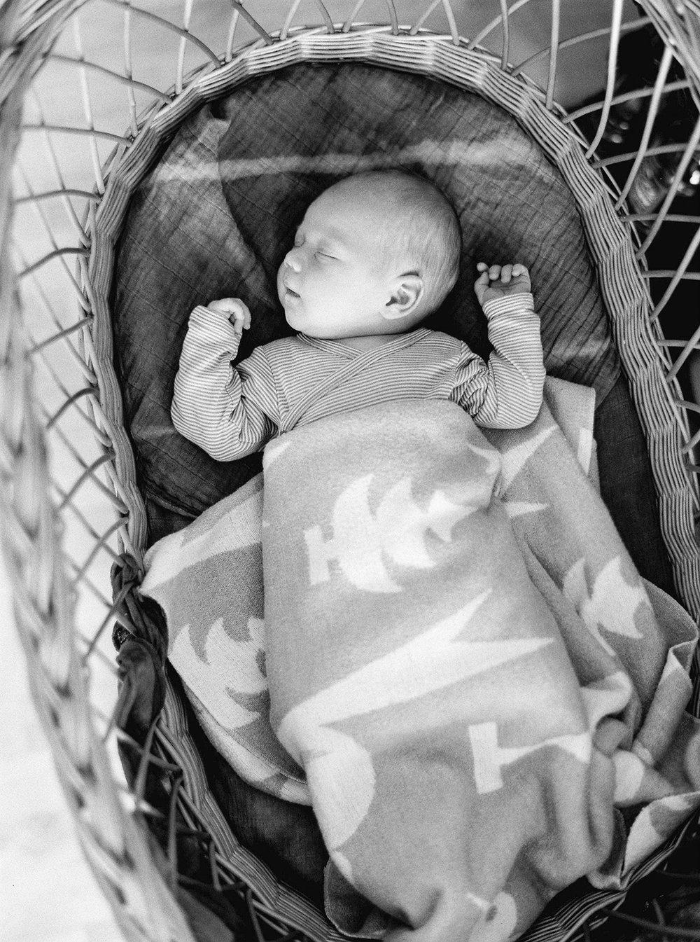 Tamara_BabyPhotosSept16-90.jpg