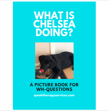 Chelsea is a speech therapy dog in training, but what does she do in her off time? This structured book teaches the structure of asking and answering What questions while giving students a peek into Chelsea's life.