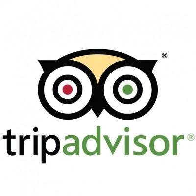 TripAdvisor-Logo-Font.jpg