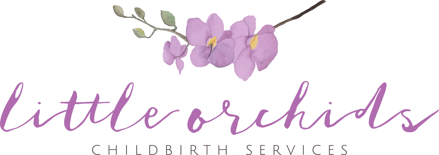 Little Orchids Childbirth Services, LLC