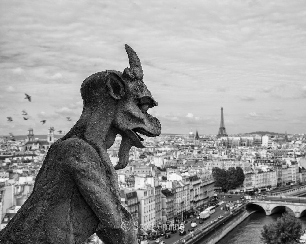 Gargoyles on Watch