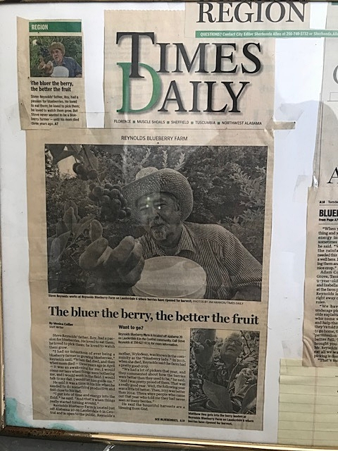 A framed newspaper article featuring Reynolds Blueberry Farm sat beside the weighing scale.  Reynolds still uses the honor system allowing patrons to pick when he is away.