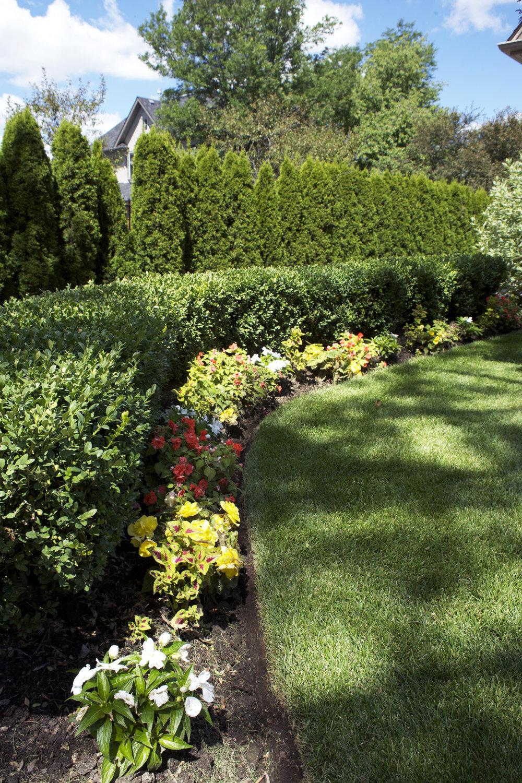 Fine Gardening -