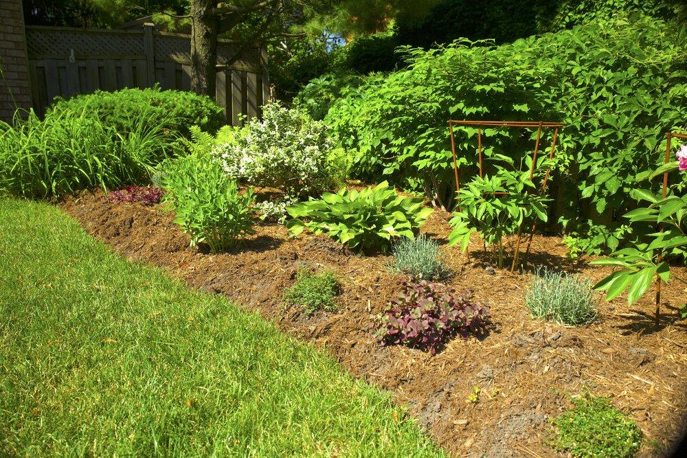 fine gardening 3.jpeg