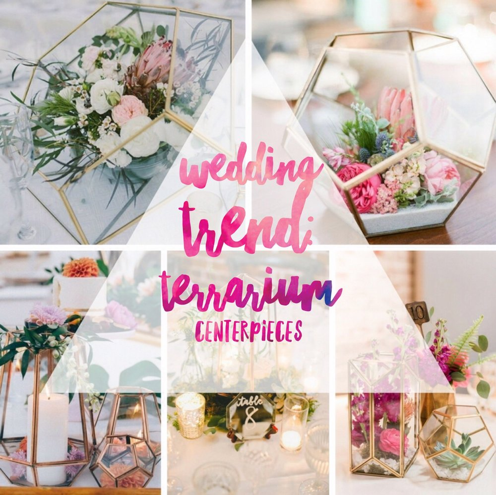 Wedding Trend: Terrarium Centerpieces — IndyBride2B