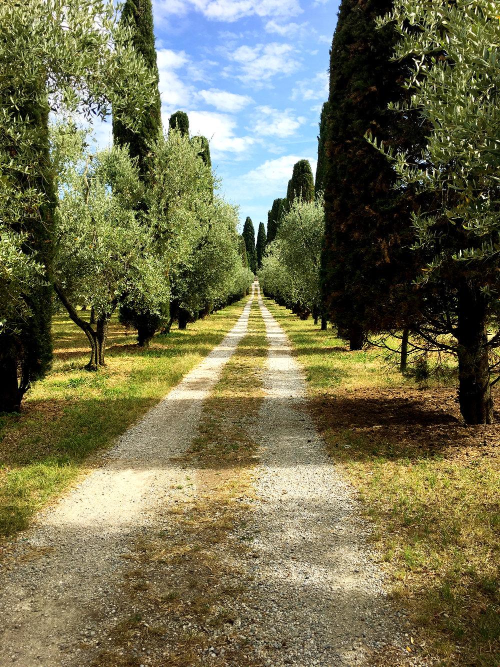 L'abbazia di Maguzzano Lonato del Garda.jpg