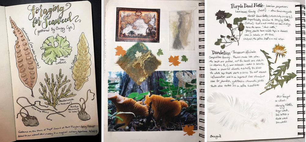 tlchang summer journal.jpg