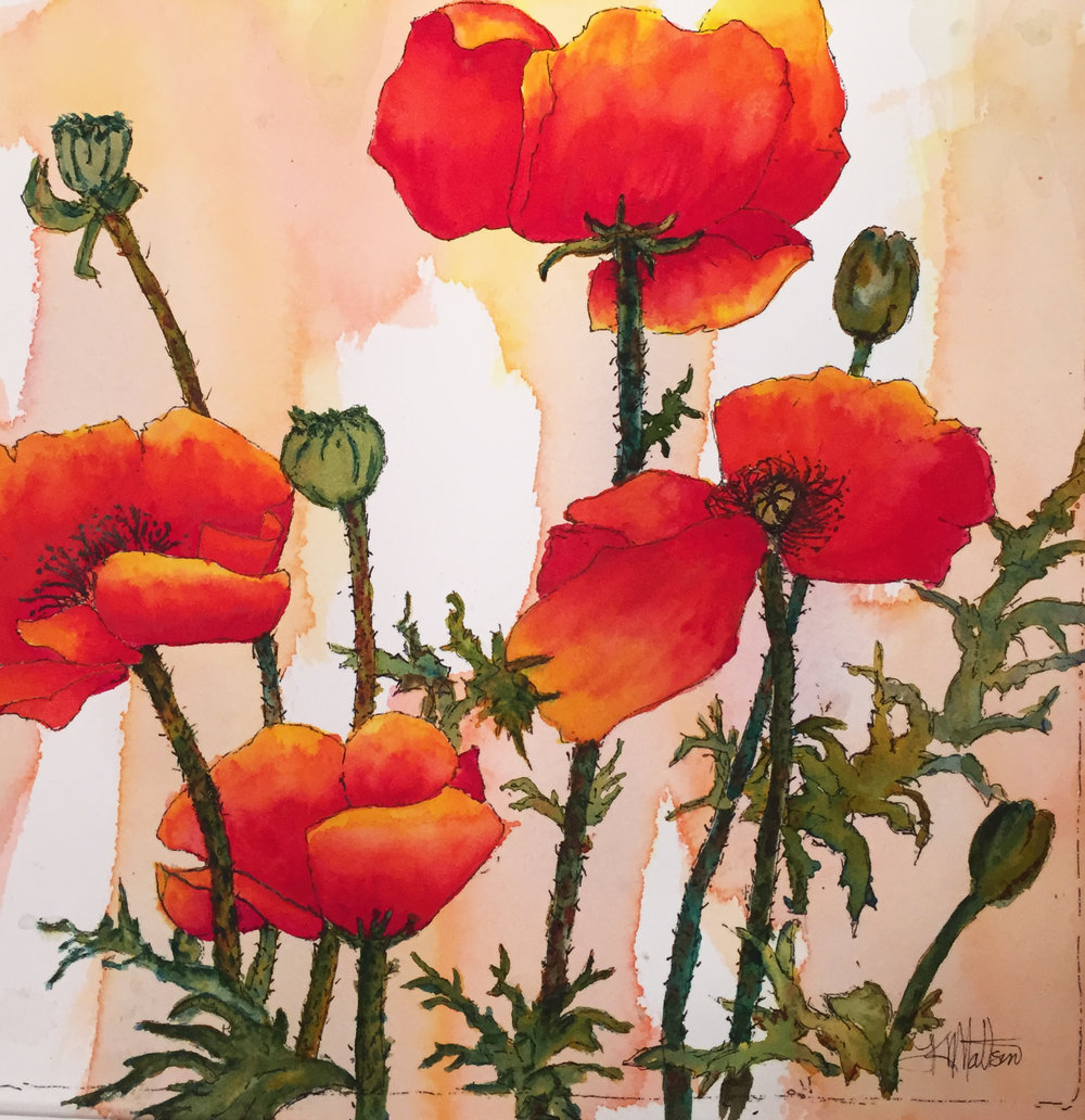 Lynnea's poppies.jpg