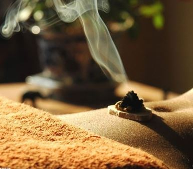 Moxibustion - Moxibustion therapy involves the smoldering of particular herbs, most commonly, Mugwort (Artemis vulgaris). This thermal therapy is effective for many applications: joint pain caused by cold or damp weather, menstrual cramping, digestive deficiencies, nausea and other imbalances caused by cold and damp stagnations in the body.