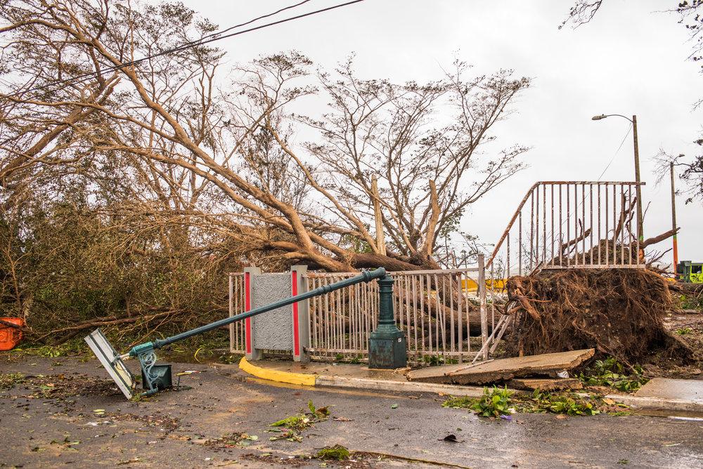_Real_Life_Hurricane_Maria-32.jpg
