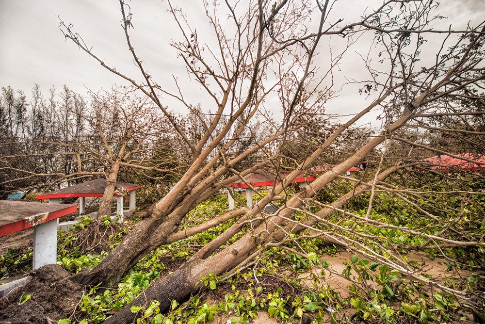 _Real_Life_Hurricane_Maria-36.jpg