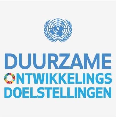SDG NL vertaling overzicht bijgesneden.jpg