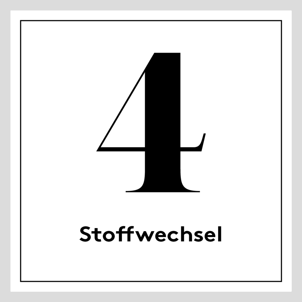 [german] 4. Grau – Stoffwechsel