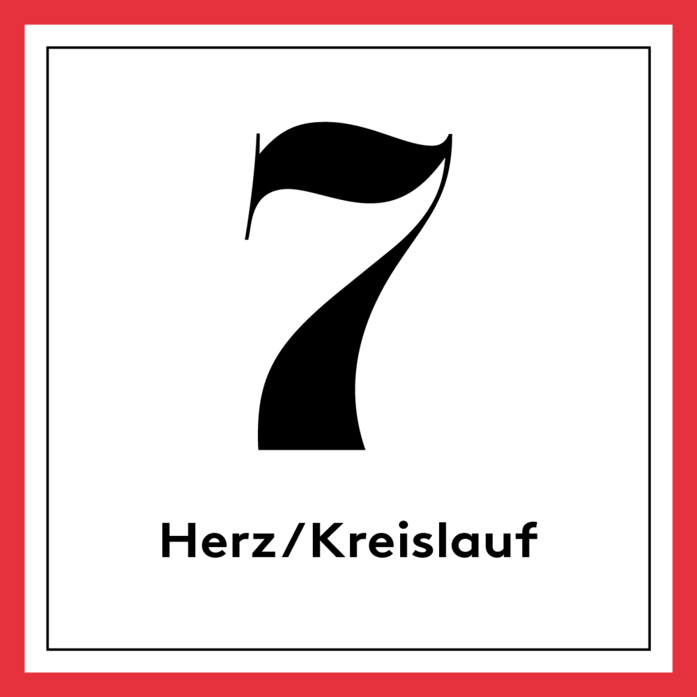 [german] 7. Rot –Herz/Kreislauf