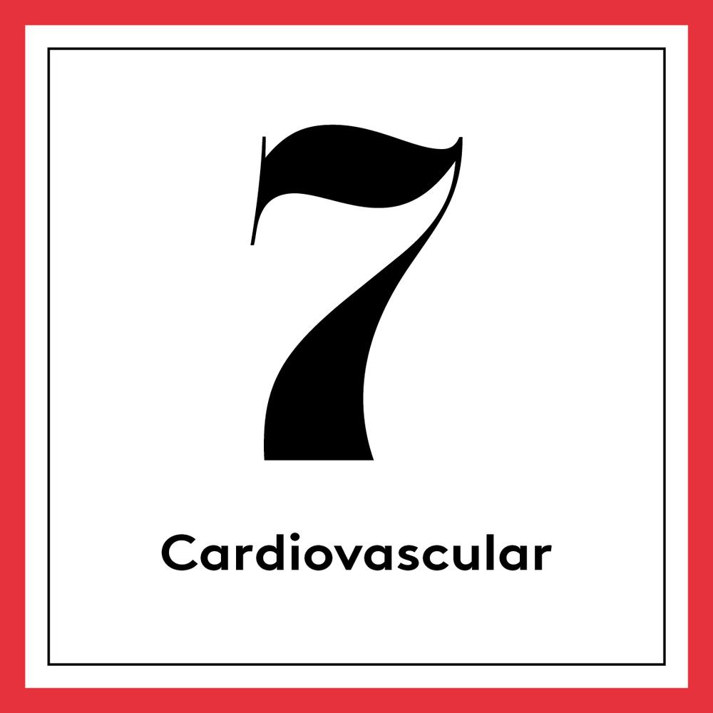 [english] 9. Cardiovascular