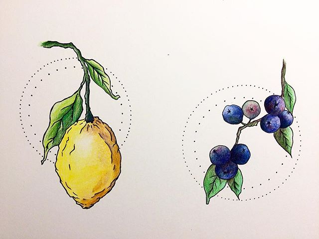 Some fruity orb magic in these final versions. Process complete. . . . #ebbandflowco #illustration #drawing #coloredpencil #design #create #thatfemaleflow #companieswithaconscience #lizardland #vitaminsea #maine #colorado #lemon #blueberry #maineblueberries