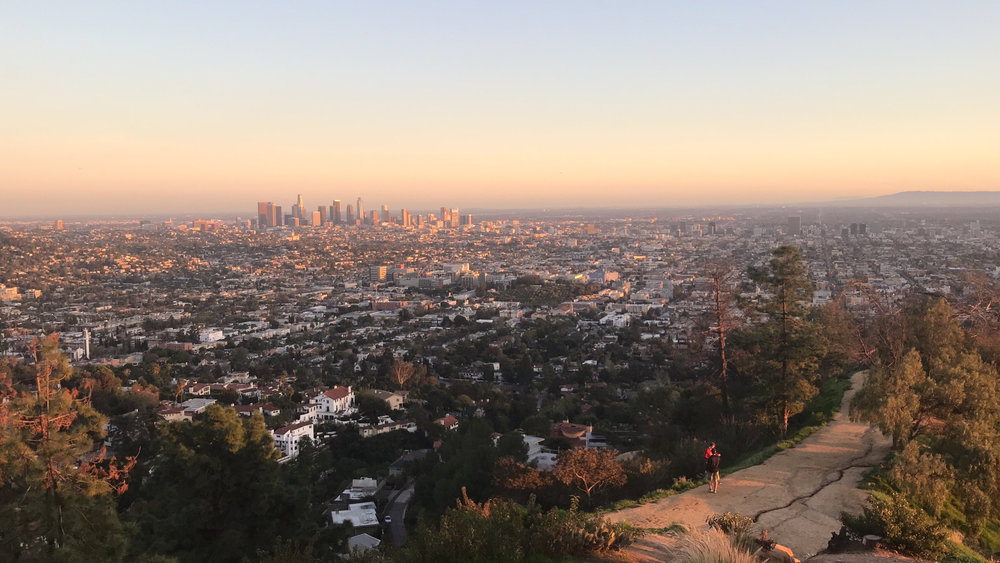 The view of La La Land from the Observatory - smog and all.