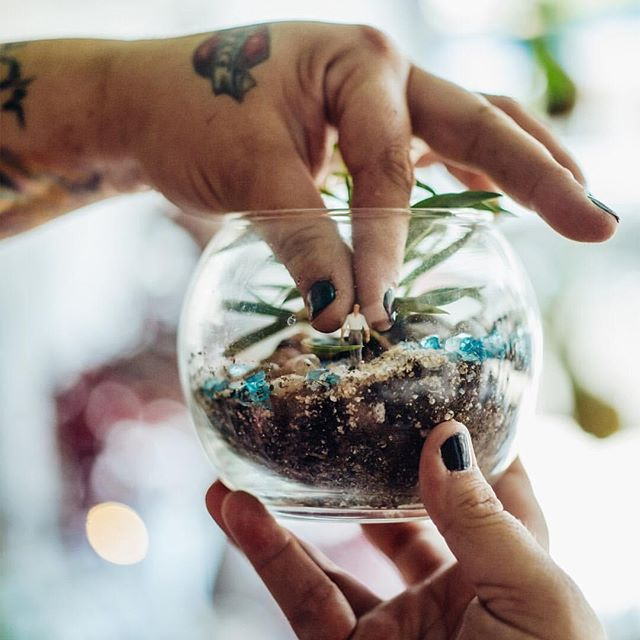 Congratulations to our host @twigterrariums for their feature in @nytimes latest issue! Sign up for their #nyc classes to make a whimsical little ecosystem of your own 🌿 📷: @sashafoto . Only 2 days left to use code INSTASUMMER5 for 5% off! . . . . . . . #ny #newyork #newyorkcity #newyorktimes #nytimes #thetimes #news #newspaper #terrarium #terrariums #plants #plantlove #ecosystem #forest #glass #diy #garden #gardening #planting #decor #tinyman #statue #crafty #artsandcrafts #nature #soil #handmade #brooklyn #dirt