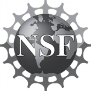 """2001 $175,000 planning grant from the National Science Foundation, """"Philosophical and Social Dimensions of Nanoscale Research: Developing a Rational Approach to a Newly Emerging Science and Technology"""" (Co-investigator)  2003 $1,350,000 National Science Foundation Grant, """"From Laboratory to Society: Developing an Informed Approach to Nanoscale Science and Technology"""" (Co-investigator)"""
